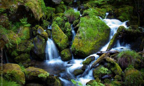 Flowing water, Watson Creek, OR