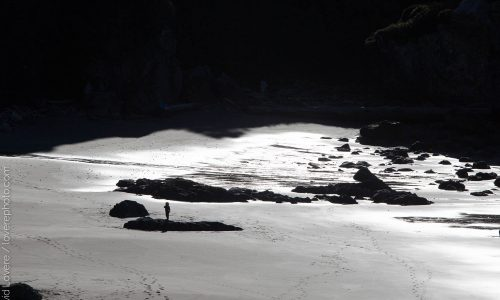 A small child on an empty each near Brookings, OR