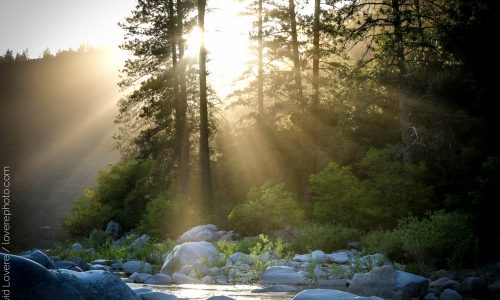Late afternoon light, South Yuba River, CA